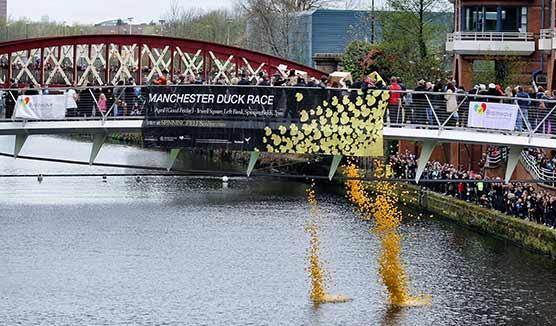 Spinningfields duck race