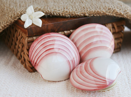 porcelain_lava_shells