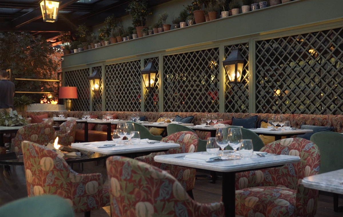 An Exclusive First Look Video Inside The Ivy