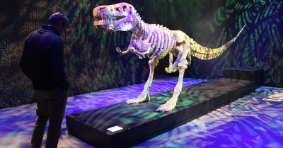 Top 5 LEGO Pieces at 'Art of the Brick'