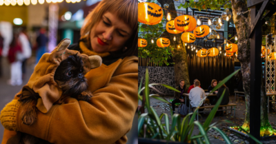 HOWL'OWEEN at Hatch – The Fancy Dress Competition and One-Stop Night Out for You and Your Dog